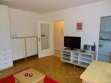 APPARTAMENTO DI 1.5 LOCALI BASEL   28 m²